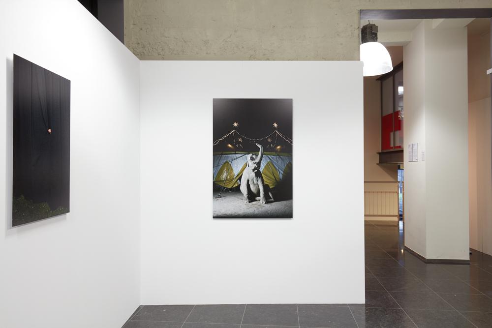 2016_02_12-Nutshuis-Curiosity-Killed-the-Cat1452_Foto-2016-Studio-Johan-Nieuwenhuize